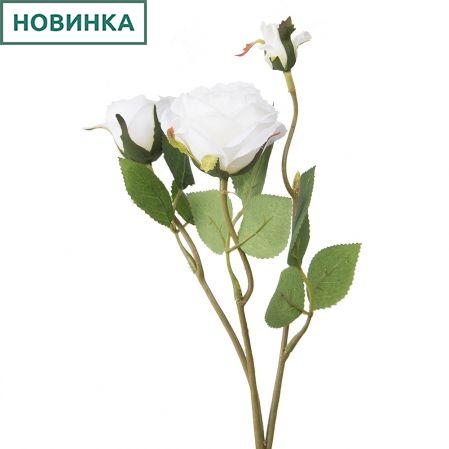 7141/А2790-09/23 Роза кустовая белая h42см(1г+2бут)(871)