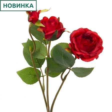 7141/А2790-09/2 Роза кустовая красная h42см(1г+2бут)(871)