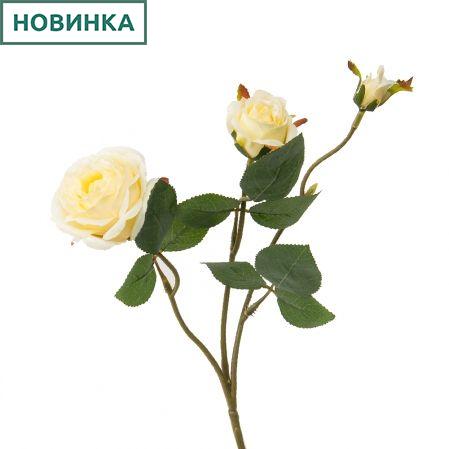 7141/А2790-09/3 Роза кустовая желтая h42см(1г+2бут)(871)