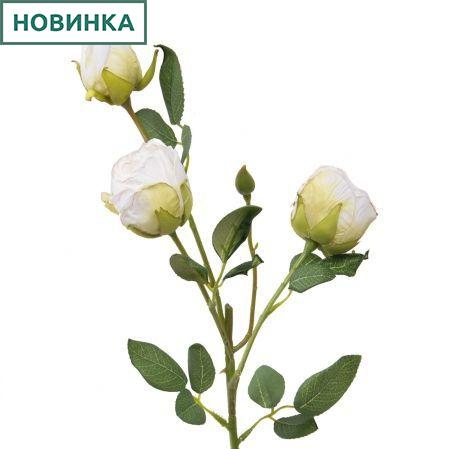 7141/А2790-05/23 Роза Ретро белая h52см(2г+1бут)(651)