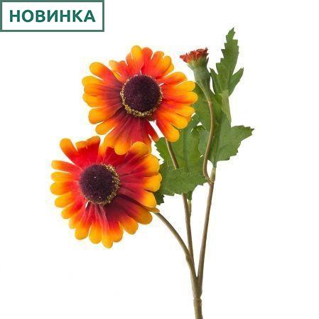 7141/А2790-010/18 Рудбекия оранж.h40см(2г+1бут)(872)
