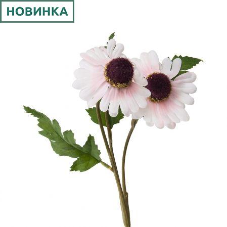 7141/А2790-010/20 Рудбекия бело-розов. h40см(2г+1бут)(872)