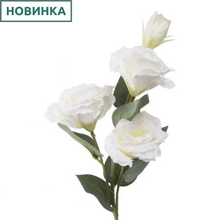 7141/А2790-07/23 Эустома белая h72см(3г+1бут)(248)