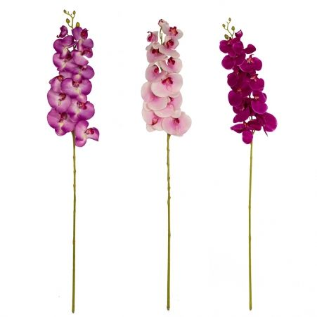 401/0433А Орхидея