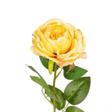 401/6002С Роза кустовая одиночная