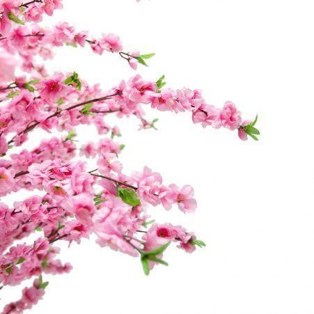 180/А/46-2  Сакура (розов)180см