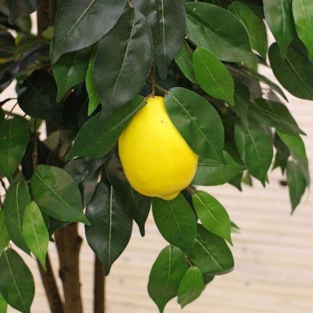 180/РПК/20М Лимон 180см (латекс)
