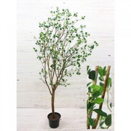 220/РН/200 Дерево с распуск.листочками 220см