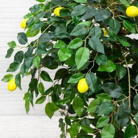 БП 110/41 Бонсай плодовый Лимон-мини h110см(латекс)