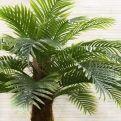 П230/49 Пальма Арека h230см(латекс)