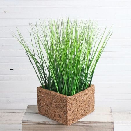 Т023 Трава в кокосовом боксе (15*10*15)(зеленая)