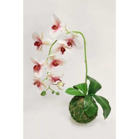"""ККД47/217 Кокедама d-15 """"Орхидея"""" бело-мал(латекс)"""