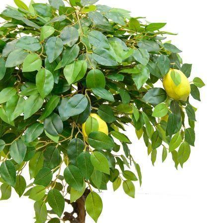 БП 100/20М Бонсай плодовый Лимон h100см(латекс)