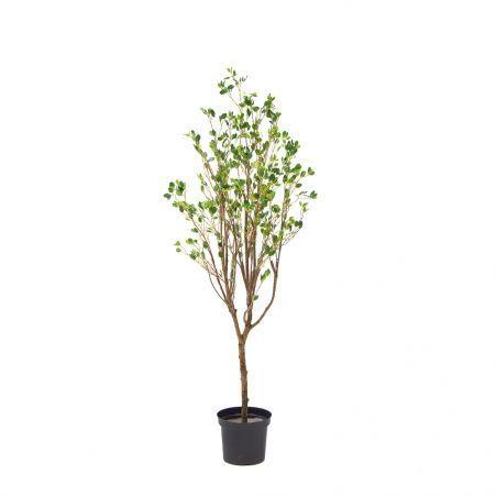 180/РН/200 Дерево с распускающимися листочками h180см