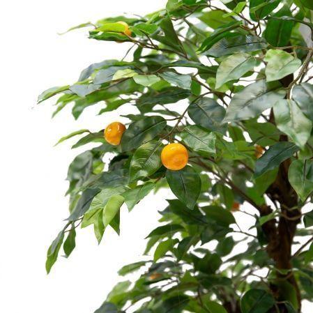 БП 100/2К/39 Бонсай плод. Мандарин-мини 100см (латекс)