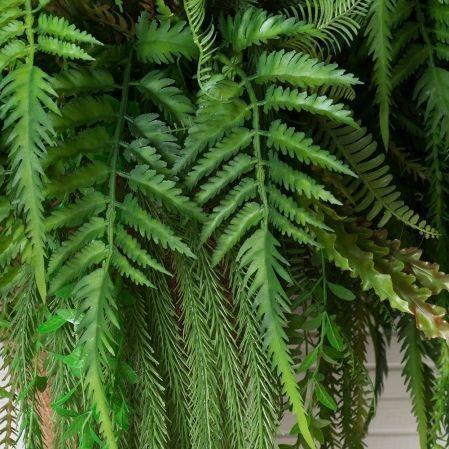 КОН02 Папоротник с зеленью в кокос. конусе(d-65. h
