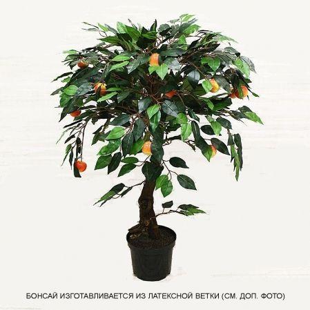БП 70/38 Бонсай плод. Яблоня-мини (красн) 70см