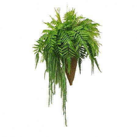 КОН01 Папоротник с зеленью h30см в кокосовом конусе d20смh39см)