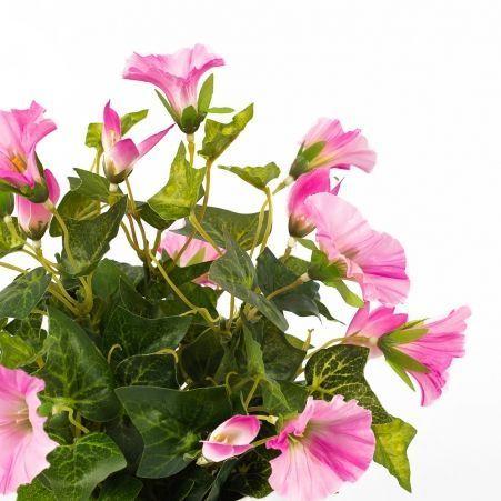 ЦС81-3 Петуния (розовая) h20см(латекс) в кашпо d11см