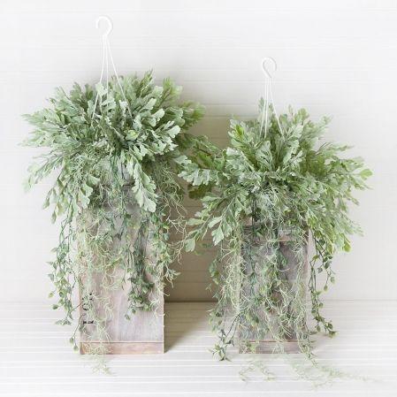 КЗ 04 Дидимохлена с ампельными растениями h19см в подвесном кашпо d13см