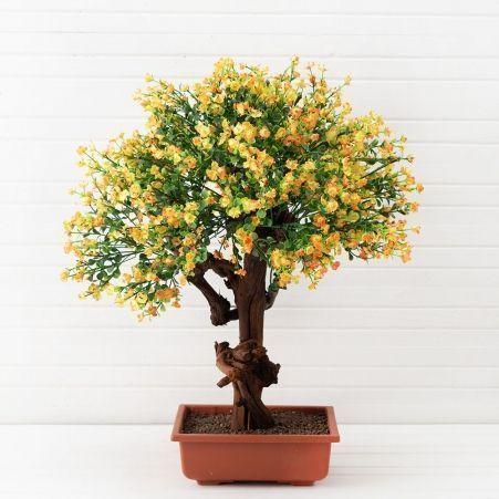 БЦ55/05 (П) Бонсай цвет. Самшит (желто/оранж) 55см
