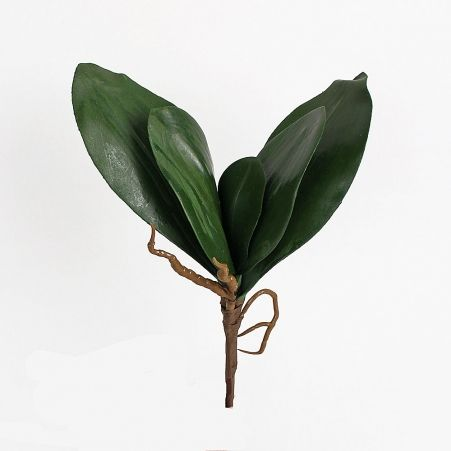 7143/9126-020 Лист орхидеи больш.