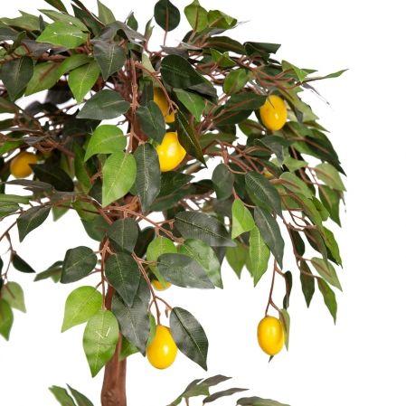 """БП 70/41 Бонсай плодовый """"Лимон-мини"""" h70см"""