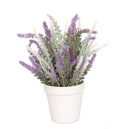 ЦС83-3 Лаванда-соцветие h20см бело-фиолетовая в кашпо d11см
