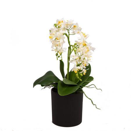 ЦС35/33-1 Орхидея (белая) h26см в интерьерном кашпо d15см