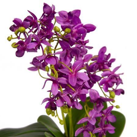 ЦС35/33-3 Орхидея (фиолетовая) h26см в интерьерном кашпо d15см