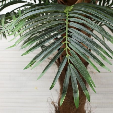 П300/49(з.) Пальма Арека (латекс) h300см ширина кроны 140см