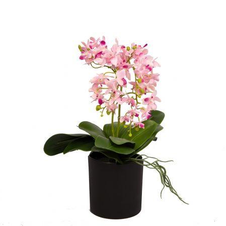 ЦС35/33-2 Орхидея (розовая) h26см в интерьерном кашпо d15см