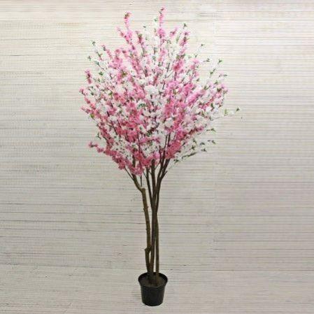 240/РН/46М(з.) Сакура (розово-белая) 240см