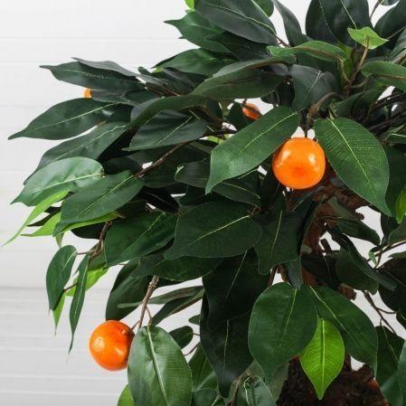 БП 40/10М(П)(з.) Бонсай плодовый Мандарин h40см(латекс)