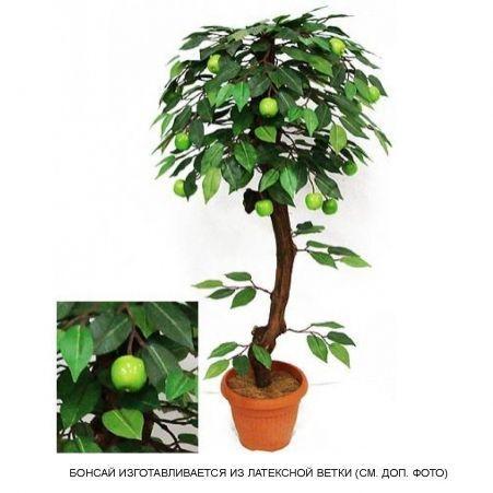 БП 70/42 Бонсай плодовый Яблоня-мини (зеленый) h70см(латекс)