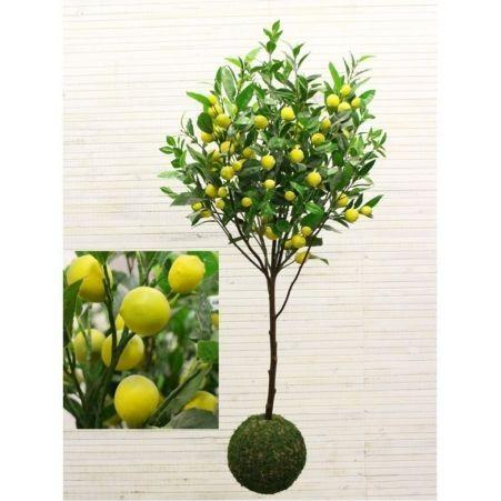 "ККДД130/20М Кокедама d-27 ""Лимон с плодами"" h130см"