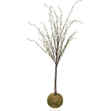 ККДД160/195 Кокедама d-27 Дерево с молод.побег.h16