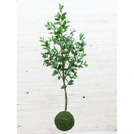 """ККДД150/198 Кокедама d-27 """"Саламандр.дерево""""h150см"""
