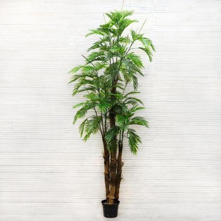 ПК260/11К/49(з) Пальма (латекс) h-260 см