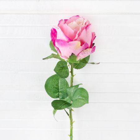401/0332-1P Роза *1 (розов.)