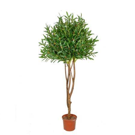 170/РН/175 Оливковое дерево 170см (латекс)