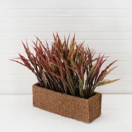 ТД052-1(Sale) Трава волнистая h-30см в кокосовом боксе (25*8*8) бордовая