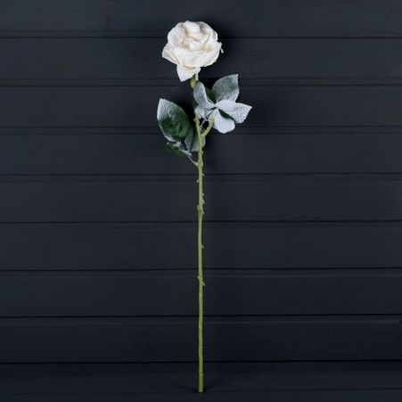 736/9180-1  Роза заснеженная h66см