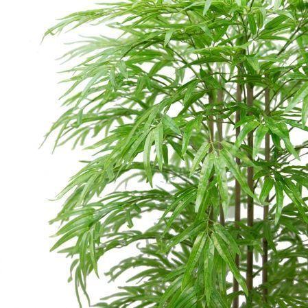 170/ШК/75-1 Бамбук *5 стволов h170см(латекс премиум)