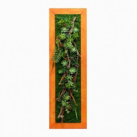 СКФ06/2(з.) Фитокартина с папор.и суккулент.(50х200см) в оранж.раме