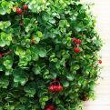 """СШ45/228-6(з.) Самшит-шар эвкалипт """"Элит"""" с ягодами d-45см"""