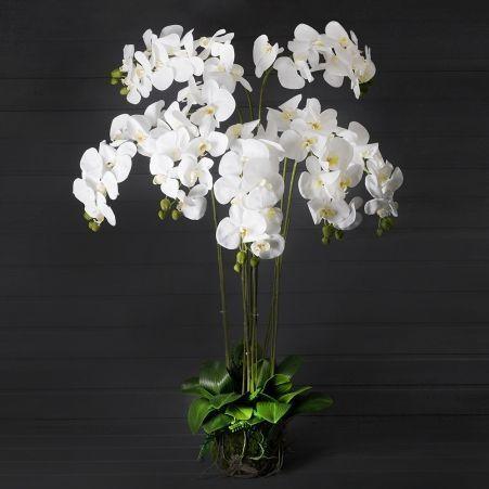 ЦК110/34(з.) Орхидея h110см(латекс) на мшистой кочке