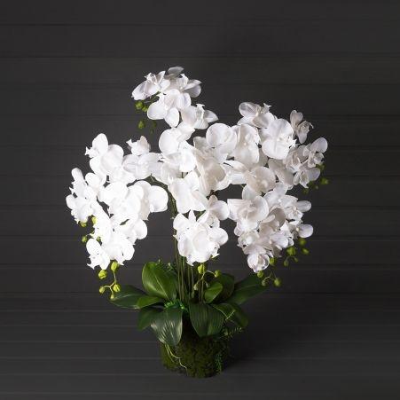 ЦК70/34(з.) Орхидея h70см(латекс) на мшистой кочке