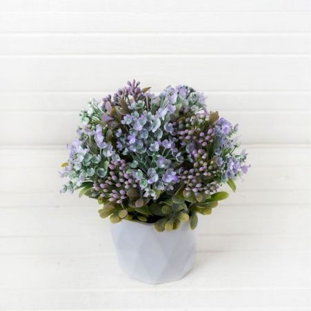 КС/О36-1 Эуфорбия (фиолет.) в декорат. кашпо h-22см