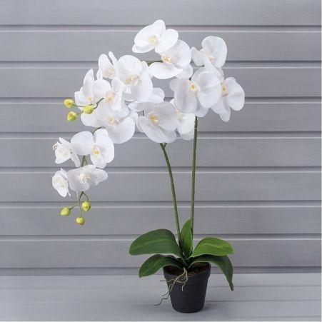 ЦИ60*2/33(з.) Орхидея h60см(латекс) в техническом горшке d11см